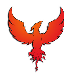 Phoenix Crane Service